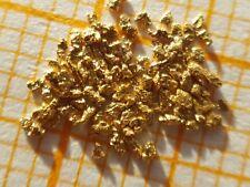 81mg  echte Gold Nugget   20-23 Karat aus Alaska