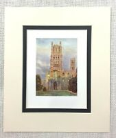 1906 Antique Print Ely Cathedral West Front Landscape Old English Architecture