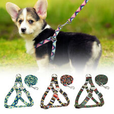 Nylon Dog Step-In Harness and Leash Dog Strap Walking Vest Small Large Dogs Lead