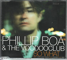 Phillip boa CD-single ainsi what