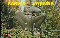 Lawrence~University of Kansas Jayhawk~Mascot Statue~1960s Postcard