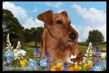 Summer Floor Mat - Irish Terrier 39220