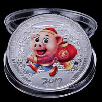 2019 Pig Souvenir Coin Chinese Zodiac Commemorative Coin Lucky Gifts Silver PLV