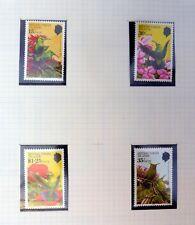 BRITISH VIRGIN ISLANDS Birds Sets & M/Sheets On 5 Pages U/M NB3495