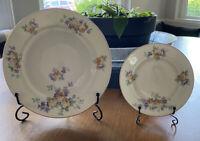 VTG Thomas Bavaria Plates Set Of 2 Floral EUC