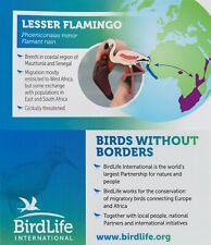 RSPB Pin Badge | lesser flamingo BirdLife International  (01408)