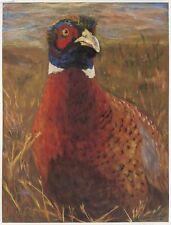"Pastel On Pastel Card  ""A Study Of A Pheasant's Direct Gaze"" Sturdy Lexan Frame"