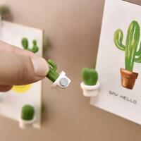 6PCs/Set Mini Cute Cactus Fridge Magnets Refrigerator NW Magnet K6S7