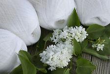 Set of 4 - Cobweb snow white merino wool yarn - haapsalu shawl yarn