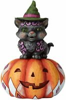 Jim Shore Mischief in the Making Black Cat Figurine~6001548~New for Halloween~