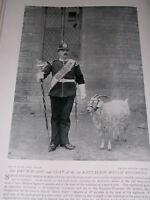 1896 Drum Major & Goat OF1ST Batt Welch Regimiento Ejército