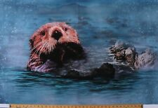 "29"" X 42"" Panel Otter Sea Animals Call of the Wild Digital Cotton Fabric D374.23"