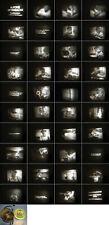 8 mm Film 1960 DDR Defa Alfons Zitterbacke,Eieressen,beim Angeln.Antique Films