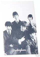 The Buckinghams Rock group early 1960s photo card See!