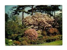Scotland - Edinburgh, Royal Botanic Garden, Peat Garden - Postcard Franked 1978
