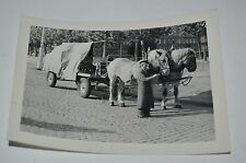Vintage Horse Drawn BEER Delivery Germany Black & White Photograph Photo 1954