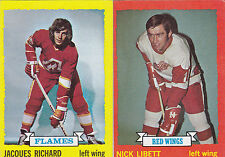 (2) 1973-74 TOPPS HOCKEY CARDS #49, 169  VG