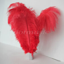 10Pcs Red Natural Red Ostrich Feathers for Wedding Decoration 12~14 inch Length