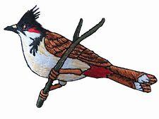"#4314 3-1/4"" Cardinal Bird,Tropical Bird Embroidery Iron On Appliqué Patch"