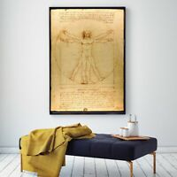 Art Fabric Silk Canvas Poster Vitruvianus Da Vinci Oil Paint Decor No Frame S203
