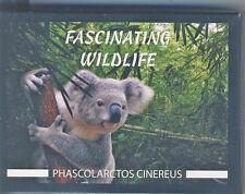 Fidschi (Fiji) 10 Dollar Silbermünze PP Koala (Faszinierendes Tierleben)