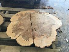 Holzscheibe Weißbuche Tischplatte ca 40x30x3 cm Baumscheibe