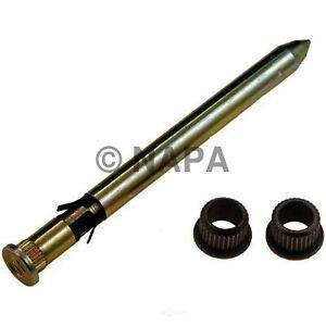 Door Hinge Pin & Bushing Kit-RWD NAPA/SOLUTIONS-NOE 6755162