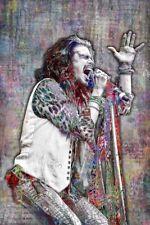 Steven Tyler Poster, AEROSMITH Artwork, Steven Tyler Art 20x30inch Free Shipping