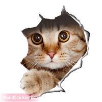 witzige Katze Aufkleber 3D Optik Wandtattoo Autoaufkleber Badezimmer WC Sticker