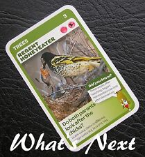 Woolworths<AUSSIE ANIMALS><Series 2 Baby Wildlife>CARD 3/36 Regent Honeyeater