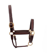 SIE New Padded Horse Empty Channel Show  Halters All sizes colors