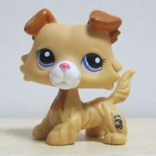 GOLDEN Cream Hair Collie Dog Littlest Pet Shop Toys Puppy LPS218