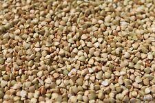 Buchweizen 1 kg geschält glutenfrei vegan Rohkost 1000 g