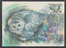 Sowjetunion 1990 Maximumkarte  Mi Nr:  6063  Ausgabe Eulen  Schnee-Eule