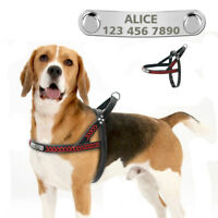 Leather Braided Personalized Dog Harness No Pull for Medium Large Dogs Bulldog