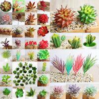 Artificial Succulents DIY Plant Garden Miniature Fake Cactus Home Floral Decor T
