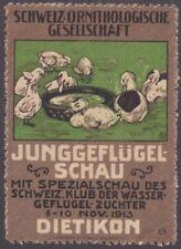 F-Ex14479 Germany Cinderella 40x56mm Poster Duck JunggeflÃœGel Schau Dietikon