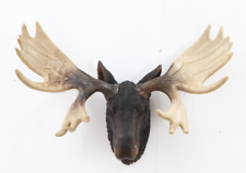 Moose Head Bust Antlers Hangs on Wall - Life Like Hunting Decor Home / Outdoor