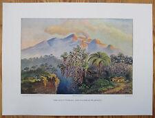 HAECKEL: Large Chromolithographic  Print Volcano Gedeh Java - 1905