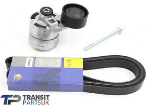 FORD TRANSIT FAN DRIVE BELT AND TENSIONER MK7 2.4 DURATORQ 06 ON WITHOUT AIRCON