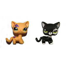 Littlest Pet Shop Purple Flower Yellow Short Hair & Black Blythe Cat Figure Toy