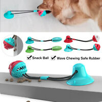 Pet Molar Bite Toy Multifunction Floor Suction Cup Dog Toy With Ball  ✯  ✌