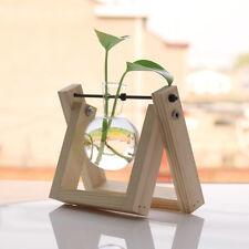 Glass Flower Planter Vase Hydroponic Pot Home Decorative Vase with Wood Base