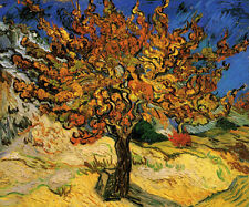 The Mulberry Tree   by Vincent van Gogh Giclee Canvas Print Repro
