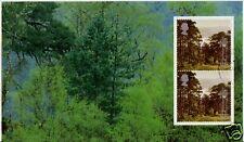 LA GRANDE-BRETAGNE 2000 TRÉSORERIE D'ARBRES FOREST VOLET TRÈS BIEN UTILISÉ