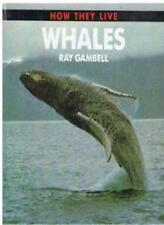 Whales (How They Live) By Ray Gambell