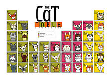 "Сat breeds  Poster CAT TABEL  felis catus 8.5"" x 11""   GATO"