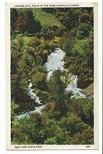 Vintage Postcard New York State Park Lansing Kill Falls Rome - Boonville Gorge