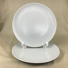 Ikea Set Of (2) Grey 10.25 Inch Diameter Dinner Plates