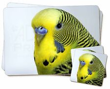 Yellow Budgerigar, Budgie Twin 2x Placemats+2x Coasters Set in Gift Box, AB-51PC